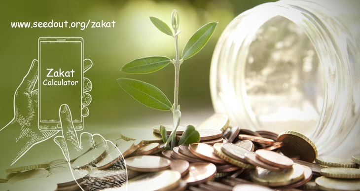 Zakat Calculator on Seed Out
